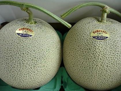 北海道産  ジャンボ赤肉メロン秀品 大玉2kg×2玉入