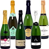 本格シャンパン製法だけの厳選泡6本セット(750m...
