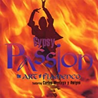Gypsy Passion Art of Flamenco