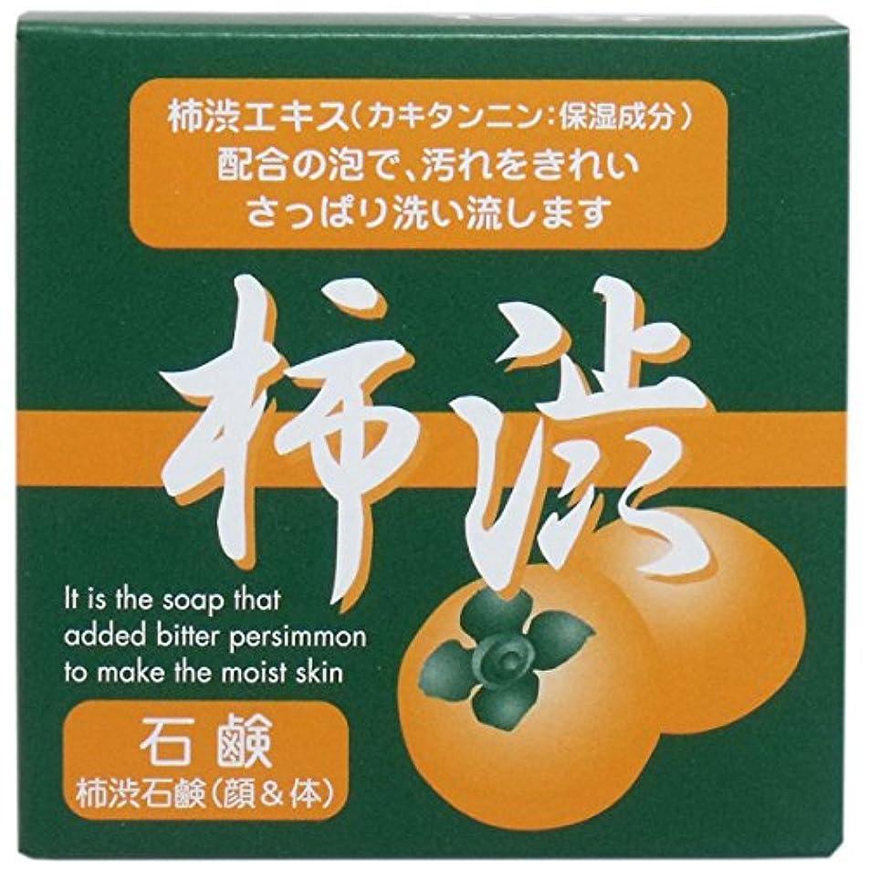 清める妨げるスペルシンライ柿渋石鹸 100g