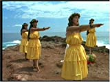 クムフラ / 踊り継ぐひと ハワイアン・フラ・スピリット vol.2 画像