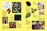 メキシコ料理大全: 家庭料理、伝統料理の調理技術から食材、食文化まで。本場のレシピ100 画像