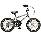 DOPPELGANGER(ドッペルギャンガー) 16インチ子ども用自転車 [付け替えできる補助輪/スタンド付属] 前後V型ブレーキ [適応身長目安:110cm~] シルバー DXR16-GY シルバー
