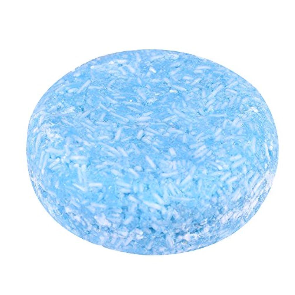 アコード運搬矛盾オーガニック手作り冷たいシナモンシャンプーバー100%ピュアヘアシャンプー(青い)