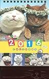 かご猫シロと季節の花々 ([カレンダー])
