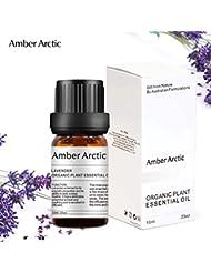 Amber Arctic ラベンダー エッセンシャル オイル - 100% 純粋 最良 治療 グレード エッセンシャル オイル、 ディフューザー 用 天然 アロマ オイル (10ミリリットル)
