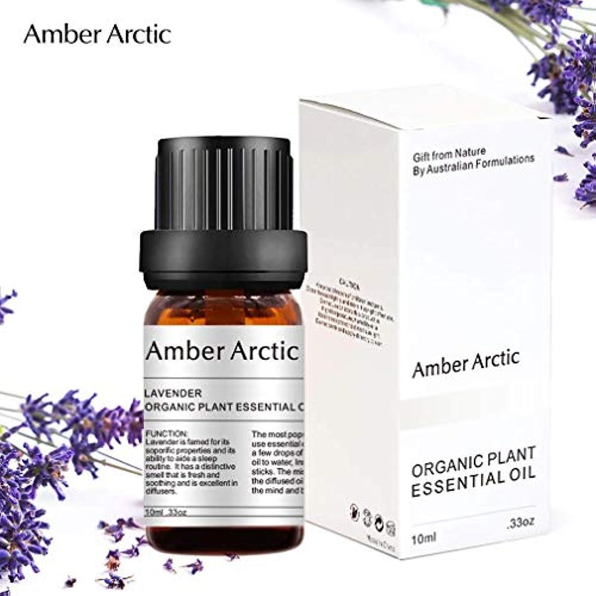 最終税金自発Amber Arctic ラベンダー エッセンシャル オイル - 100% 純粋 最良 治療 グレード エッセンシャル オイル、 ディフューザー 用 天然 アロマ オイル (10ミリリットル)