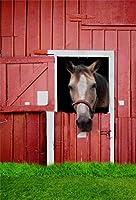 aofoto 5x 7ftブラウンStallionヘッドLooking Out彼の安定の背景Farmhouse Horse写真バックドロップKid Girl子少年Portrait素朴な田園風景写真Studio小道具ビデオドレープ壁紙