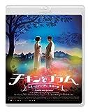 チキンとプラム~あるバイオリン弾き、最後の夢~ [Blu-ray]
