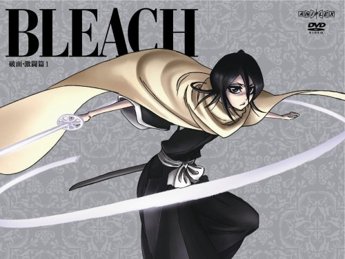 BLEACH 破面(アランカル)・激闘篇 1 【完全生産限定版】 [DVD]の詳細を見る