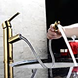 バスルーム・洗面ボウル・洗面台用水栓 綺麗な台所用蛇口 台付 冷熱混合栓 真鍮(黄銅)ハンドシャワー形(ヘッド引き出しタイプ) 任意の角度回転可能 ニッケルめっき表面処理 ゴールド色 MPDK010