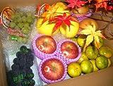 果物屋さんの旬のフルーツセット 約4kg