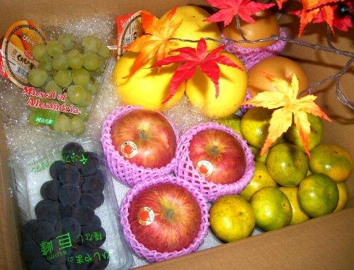 果物屋さんの旬のフルーツセット 約4kg / JA
