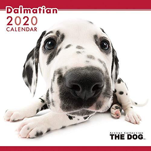 THE DOG カレンダー ダルメシアン 2020年