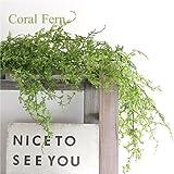 (再入荷しました)コーラルファーンハンギングブッシュ 観葉植物 造花 インテリア CT触媒 フェイクグリーン 40959
