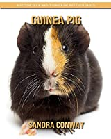 Guinea Pig: A Picture Book about Guinea Pig and Their Babies