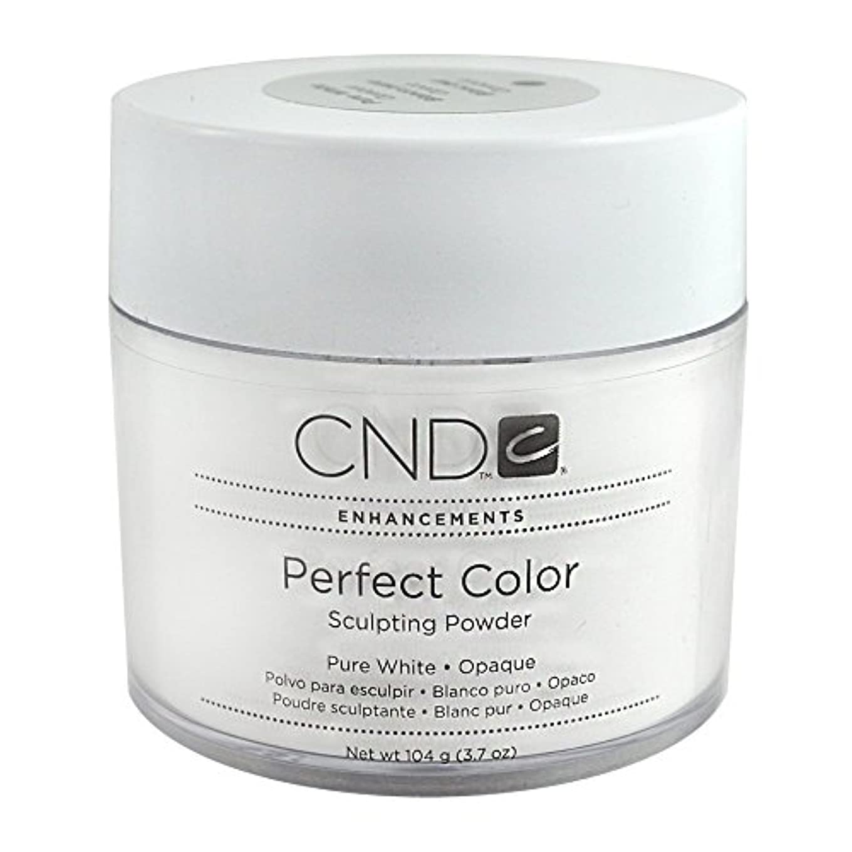 付属品最大限削減CND パーフェクトカラースカルプティングパウダー 3.7oz
