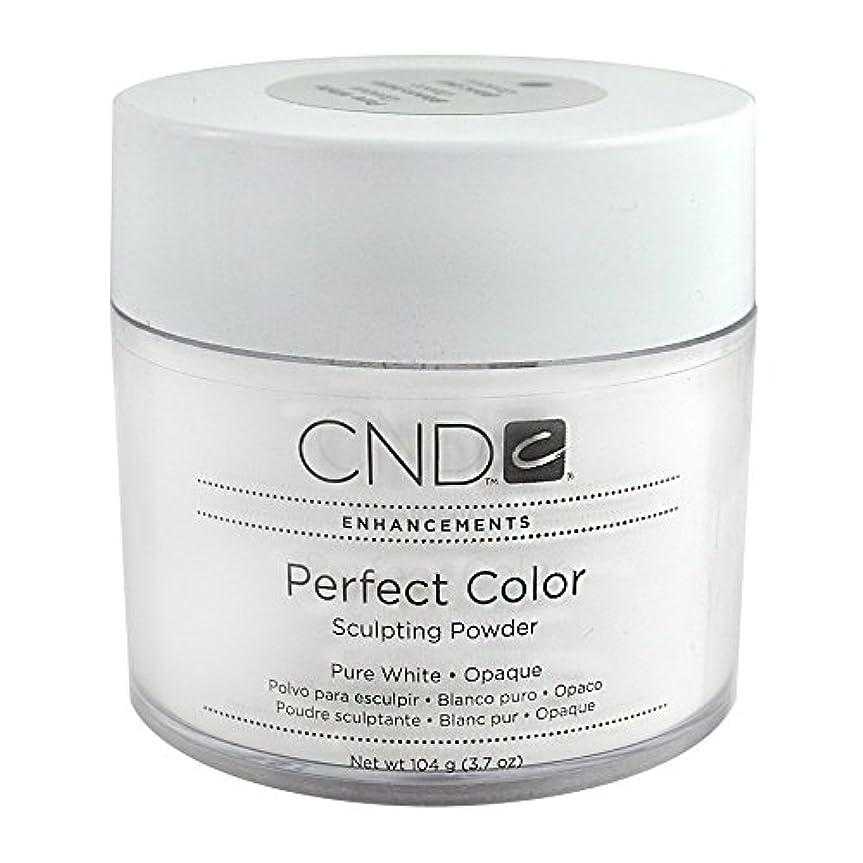 CND パーフェクトカラースカルプティングパウダー 3.7oz