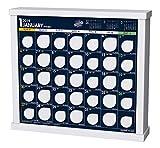 トライエックス 卓上 ザ・10万円カレンダー 2019年 カレンダー CL-592 卓上 23×26cm ……