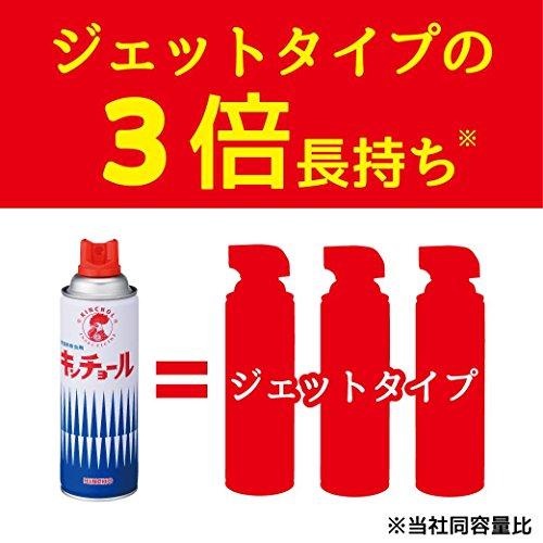 『キンチョール ハエ・蚊殺虫剤スプレー 450mL ローズの香り』の5枚目の画像