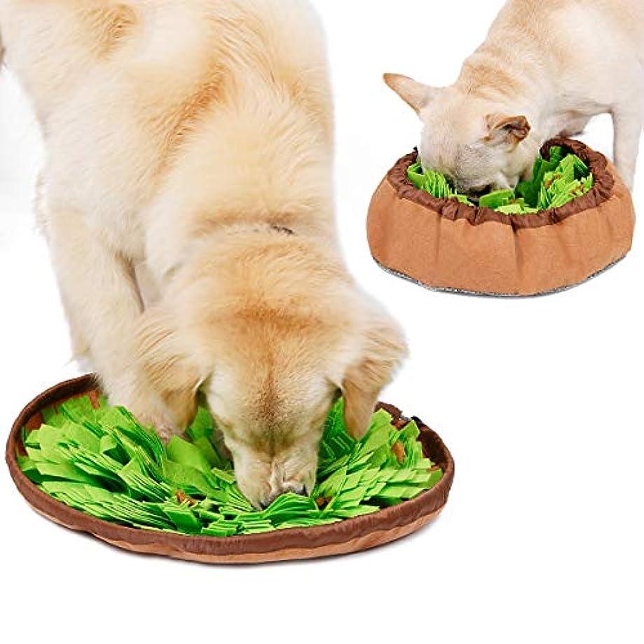 カトリック教徒想像する正確さYZshell Doglemi Dog Snuffle Bowl Matペット鼻づまり作業マットIQトレーニングスローイートボウル 用 (色 : Green)