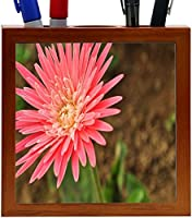 Rikki Knight Pink Daisy Macro on Blurred Background Design 5-Inch Tile Wooden Tile Pen Holder (RK-PH9180) [並行輸入品]
