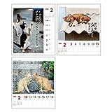 アートプリントジャパン 2017 猫川柳 カレンダー(週めくり) No.006 1000080067 画像