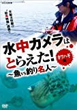 水中カメラはとらえた! 魚VS釣り名人 カワハギ編[DVD]