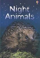 Night Animals (Beginners Series)