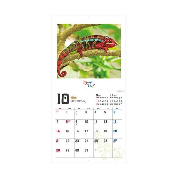 トカゲちゃん 2018年 カレンダー 壁掛け...の紹介画像13