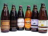 ゴールデン・ケルシュ、エスプレッソ、ゴールデン・エディンバラ、マンゴー、ブルーベリー、ル・レクチェ 新潟ビール(株)6本セット VOL.3 300ml×各1本、ご自宅用