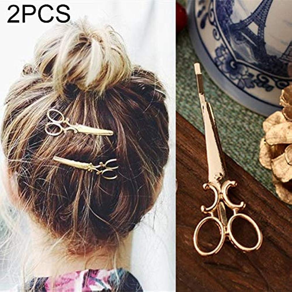 創傷まだペインティングフラワーヘアピンFlowerHairpin YHM 2 PCS簡単な髪飾りパーソナライズされたヘアクリップ飾りレトロワードフォルダヘッドドレス(ゴールド) (色 : Gold)