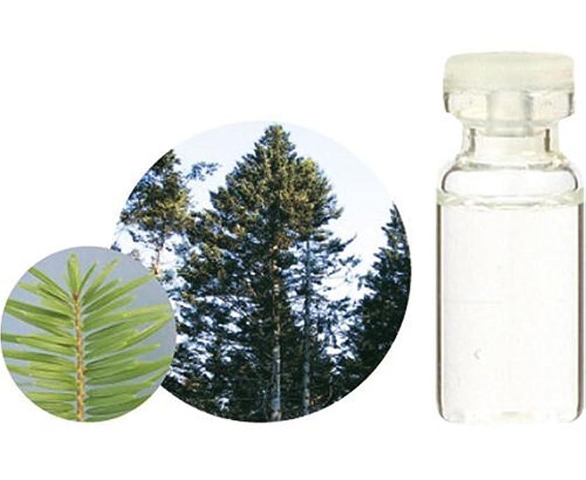 宿泊緊急最も遠い生活の木 C 和精油 モミ エッセンシャルオイル 10ml