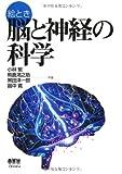 絵とき 脳と神経の科学