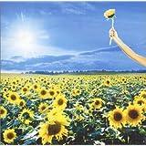 グレイテスト・ヒッツ(初回生産限定)(DVD付)