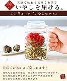 いやしセット 工芸茶5種と耐熱茶漉し付きマグカップ(通常ラッピング)