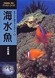 海水魚 (ヤマケイポケットガイド)