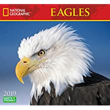 National Geographic Eagles 2019 Wall Calendar