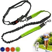 Zenify Hands Free Dog Lead for Running, Walking, Hiking, Canicross Dual Handle Comfortable Waist Belt Leash Band Reflective