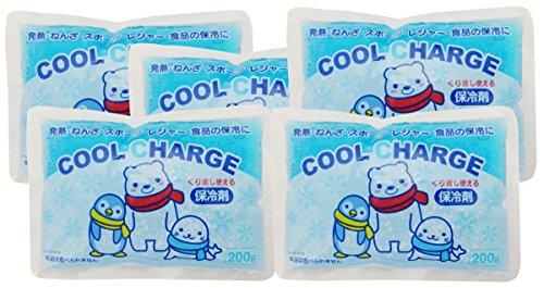 紀陽除虫菊 保冷剤 クールチャージ200g 5個セット