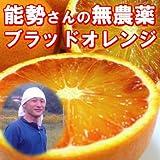 有機JAS法準拠 無農薬 ブラッドオレンジ 3kg A品 有機栽培 能勢さんの ブラッドオレンジ 国産