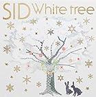 White tree(初回生産限定盤A)(在庫あり。)