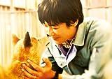 ひまわりと子犬の7日間 [DVD] 画像