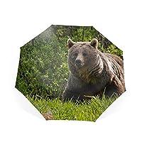 折りたたみ傘 日傘 晴雨兼用 遮光 遮熱 UPF50 UV 紫外線 99% カット 大型 88cm レディース 8本骨