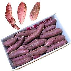 鹿児島県産 農家直送 完熟蜜芋 訳あり紅はるか(べにはるか)5kg 規格外
