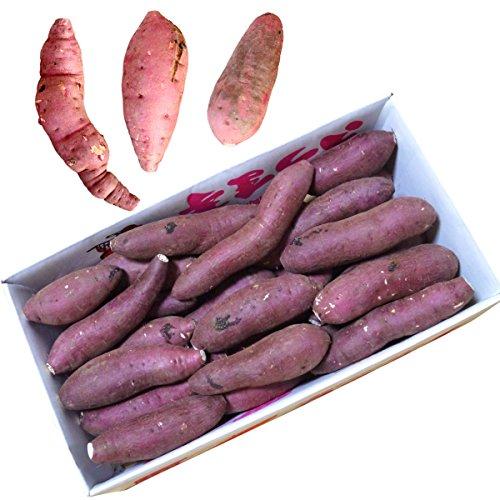 鹿児島県産 農家直送 完熟蜜芋 紅はるか(べにはるか)5kg 規格外