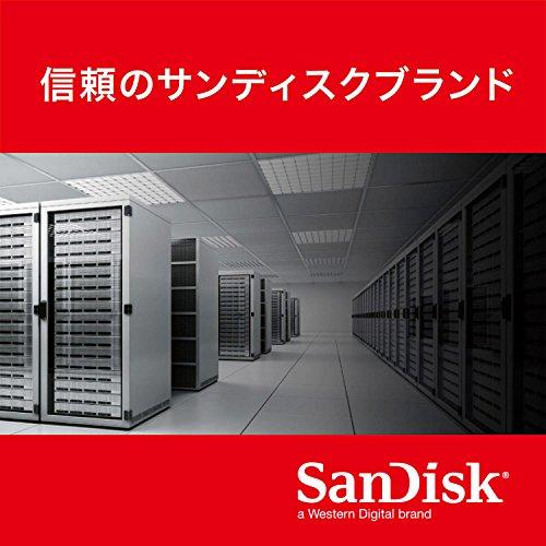 『SanDisk mSATA SSD UltraII 256GB [国内正規品]メーカー3年保証付 SDMSATA-256G-G25』の6枚目の画像