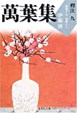 萬葉集釋注〈9〉巻第十七・巻第十八 (集英社文庫ヘリテージシリーズ)
