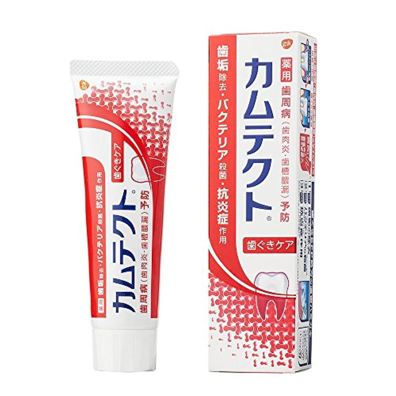 [医薬部外品]カムテクト 歯ぐきケア 歯周病(歯肉炎?歯槽膿漏) 予防 歯みがき粉 115g