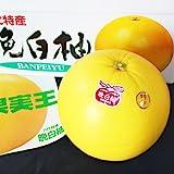 【 熊本県産 】 晩白柚 ( ばんぺいゆ ) 2L~Lサイズ (2玉入り (化粧箱))